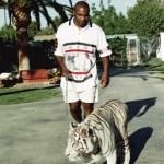 マイクタイソンのペット、「トラ」