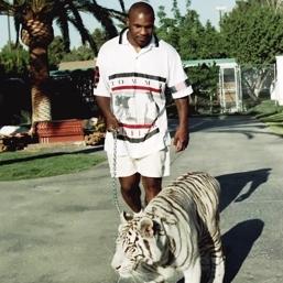 マイクタイソンのトラ